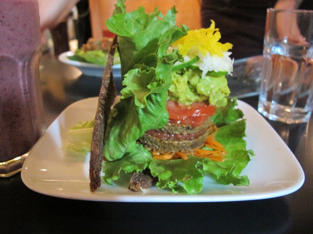 GO Veggie Burger – the brown piece on the left is the raw bread. Not for everyone but I liked it.
