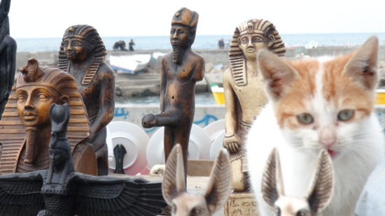 Photogenic Feline Friday: Egyptian Deities