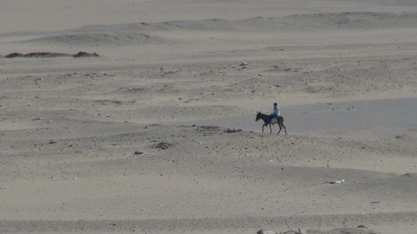 Been Through the Desert on a Horse with No Name