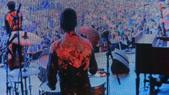 Charles Bradley on the Big Screen at the 2013 Burnaby Blues and Roots Festival