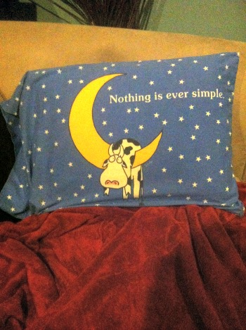The pillow says it all!