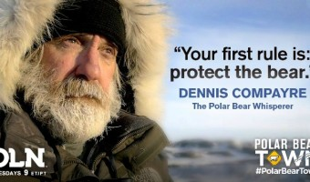 Denis Compayre, the Polar Bear Whisperer