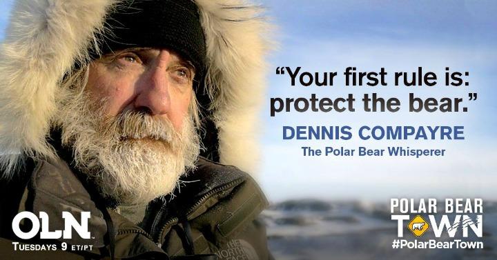 Denis Compayre, the Polar Bear Whisperer