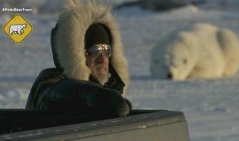 Polar Bear Town TV Soundtrack Composer Shawn Pierce: An Interview