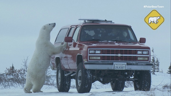 Life in Churchill, Manitoba
